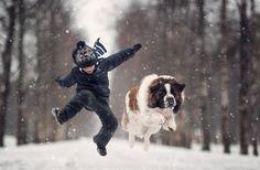Собаки, как маленькие дети, любят резвиться, шалить и играть.