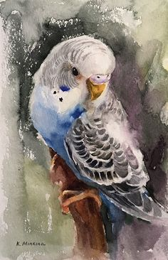 Daily Paintworks - - Original Fine Art for Sale - © Katya Minkina Watercolor Bird, Watercolor Animals, Watercolor Paintings, Watercolors, Bird Drawings, Animal Drawings, Drawing Birds, Animal Paintings, Bird Paintings