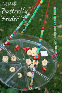 A butterfly feeder that is easy to make for an insect activity, preschool activity, kindergarten insect lesson. Use with Apologia Flying Creatures http://shop.apologia.com/63-zoology-1