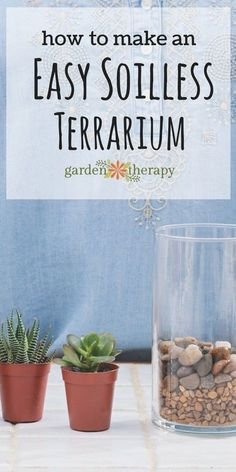 How to make an easy soilless terrarium garden. How to make a terrarium.  Once you have this basic design down, it gives the you the opportunity to interpret a terrarium garden many times over and to with your own vision. The colors of the stones can be changed, the succulents used are easy enough to be varied, and the glass container can be taller or wider. This step-by step tutorial comes to us from terrarium expert and author, Maria Colletti.