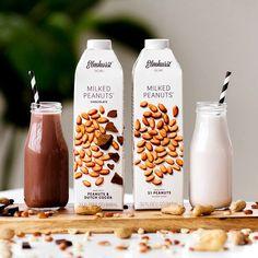 Peanut Milk and Peanut & Dutch Cocoa Milk Milk Recipes, Dairy Free Recipes, Gluten Free, Dairy Free Pumpkin Pie, Dairy Free Cheesecake, Lactose Free Diet, Pumpkin Smoothie, Smoothie Blender, Peanut Butter Cups