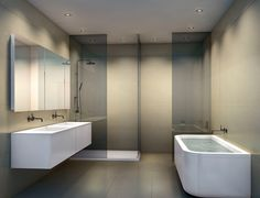 Smokey glass.  Shower stall opposite tub.