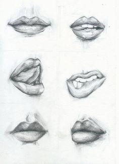 Labios mostrados de diversas formas y estilos.