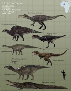 Elrhaz Formation Fauna by PaleoGuy on DeviantArt