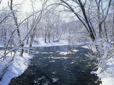 Snowy Forest Scene Along the Blue River, Indiana, USA