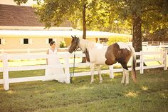 Horse at Wedding | 2 Must-Haves For A Fall Wedding at Maple Grove Farm with photos by Cindy B. Thymius Photography | The Pink Bride®️️ www.thepinkbride.com