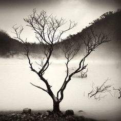 Black and White by Hengki Koentjoro
