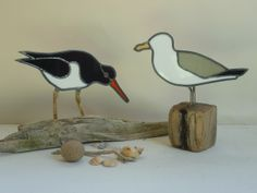 debbiesshedblog.files.wordpress.com 2012 09 oystercatcher-and-seagull.jpg?w=300