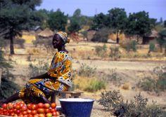 Venditrice, villaggio sul lago Maga, #Cameroun