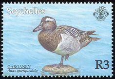 Garganey stamps - mainly images - gallery format