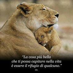 Una mamma è sempre un rifugio per tutti! Nicoletta Lastella