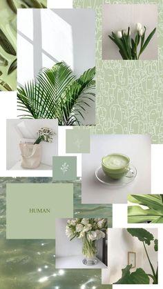 white // green wallpaper