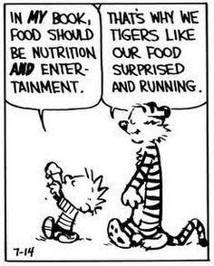 Calvin and Hobbes -- tigers like their food surprised and running Calvin And Hobbes Quotes, Calvin And Hobbes Comics, Haha Funny, Hilarious, Lol, Funny Quotes, Funny Memes, Qoutes, Fun Comics