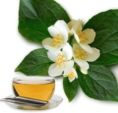 Neroli Essential Oil – Pure Neroli Oil Wholesale Suppliers and Manufacturers, India Neroli Essential Oil, Neroli Oil, Organic Essential Oils, Bad Circulation, Green Organics, Orange Blossom, Face Skin, Natural Oils, Plant Leaves