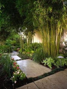 Creative DIY Japanese garden designs that you can build yourself to complement your B . Creative DIY Japanese garden designs that you can build, Garden Garden backyard Garden design Garden ideas Garden plants Tropical Landscaping, Modern Landscaping, Garden Landscaping, Landscaping Ideas, Backyard Ideas, Tropical Gardens, Garden Paths, Tropical Garden Design, Landscaping Software
