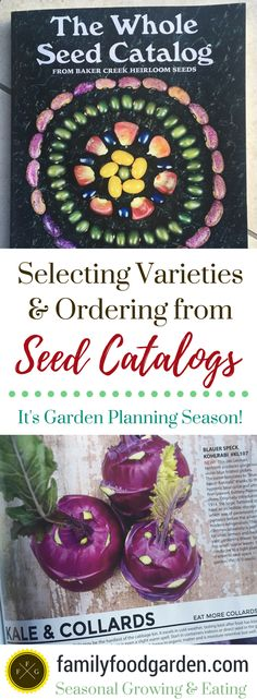 Garden planning tips for seed catalogs