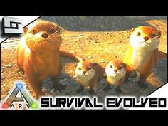 nice Otters! Otter Breeding! Baby Otters! ARK: Survival Evolved E19 ( Ark Ragnarok Map )