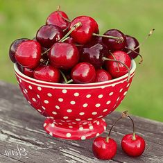 This bowl is too cute. Reminds me of the fruit bowl that was always on my grandmothers table! Dreaming of Cherry the one piece that brings everything else together, the crowning cherry that turns good into perfect. Acerola, Party Fiesta, Cherries Jubilee, Red Cottage, Simply Red, Sweet Cherries, Red Fruit, Delicious Fruit, Fruit Recipes