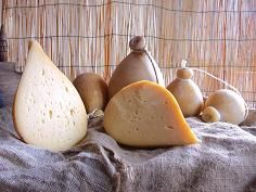 Sounding the alarm again is the CIA Basilicata as the raw material for the production of #cheese, sheep's #milk and goat's milk, it is facing a dramatic phase.