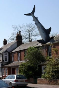 The Shark became the most famous resident of Headington when it landed in the roof of 2 New High Street in the early hours of Saturday, 9 August 1986.