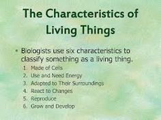 characteristics of living things - More