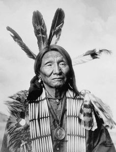 Native American (Lakota Sioux)