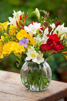 Freesias. Absolutely love them.