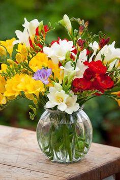 ✫✫ ❤️ *•. ❁.•*❥●♆● ❁ ڿڰۣ❁ ஜℓvஜ♡❃∘✤ ॐ♥⭐▾๑ ♡༺✿ ♡·✳︎·❀‿ ❀♥❃ ~*~ TUE 12th APR 2016!!! ✨ ✤ॐ ❦♥⭐♢∘❃♦♡❊ ~*~ Have a Nice Day ❊ღ༺ ✿♡♥♫~*~ La-la-la Bonne vie ♪ ♥❁●♆●✫✫