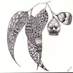 "ZenTangle Gum Leaves "" by Kerryn Rowe Onion Drawing, Leaf Drawing, Doodles Zentangles, Zentangle Patterns, Landscape Art Quilts, Australian Native Flowers, Botanical Tattoo, Pintura Country, Floral Artwork"