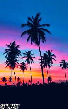 summer sunset pictures photos and images is part of Summer wallpaper - Summer Sunset Pictures, Photos, and Images Beautifulart Ocean Sunset Pictures, Nature Pictures, Beautiful Pictures, Paradise Pictures, Nature Wallpaper, Wallpaper Backgrounds, Neon Backgrounds, Sunset Wallpaper, Neon Wallpaper