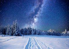 Обои Зима Леса Небо Звезды Снег Ель Ночь Природа