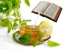 ein ganz besonderes Standbein und ganz speziell für unsere Kirchengemeinderäte sowie alle gläubigen Menschen. Diese Produkte werden rein aus Zutaten hergestellt, die in der Bibel erwähnt sind.
