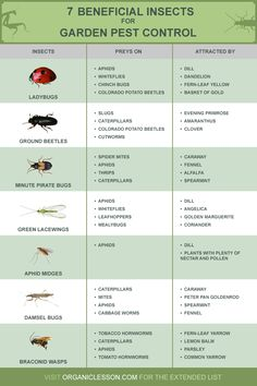 14 Beneficial Insects for Natural Garden Pest Control Forget the use of poisonous, expensive pesticides. Enlist the help of these …