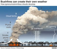 Australia fires: A visual guide to the bushfire crisis - BBC News Technology Posters, Energy Technology, California Wildfires, Volunteer Firefighter, Meteorology, Image Caption, English, Renewable Energy, Solar Energy