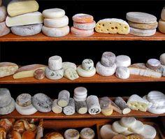 Tiny cheeses
