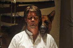 German Shepherds, German Shepherd Dogs, T Rex, Tattoo, Celebrities, Animals, Tv, Books, Movies