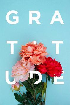 Gratitude | Covetboard Quotes