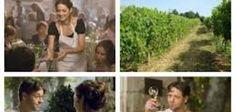 Un'ottima Annata - Vino - World Wine Passion