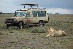 Southern Serengeti doing game drive.