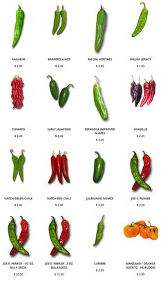 The famous Hatch Green Chile, Poblano, Big Jim and other green and red chiles for great Hatch chile stews, chile rellenos, and so much more. Coconut Oil Weight Loss, Healthy Weight Loss, Chile Picante, Types Of Peppers, Hatch Chili, Eggs Low Carb, Mexican Chili, Meal Prep Guide, Pepper Seeds