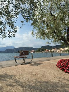 #Bardolino #LagoDiGarda | To learn more about #Verona click here:             http://www.greatwinecapitals.com/capitals/verona