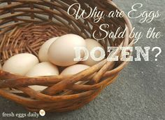 Why are Eggs Sold by the Dozen?   Fresh Eggs Daily