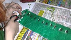 Продолжение... Рассада по московски или самокрутка  посадка семян в пеленки