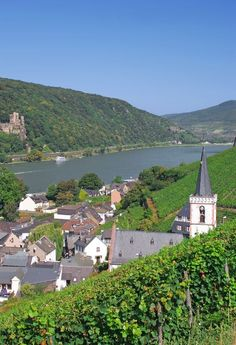 Rudesheim, Germany on the Rhine River. This is where my German side are from. The area got quite heavily bombed in the war and it's home to Reisling!