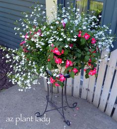 White Lobelia and Bright Coral Impatiens are great in hanging or elevated pots.