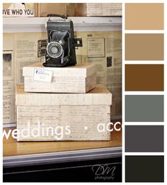 Vintage Camera {brown & grey color palette} - For the Office Color Combos, Color Schemes, Stripping Furniture, Grey Palette, Color Glaze, Gray Interior, Paint Colors For Home, Colour Board, World Of Color