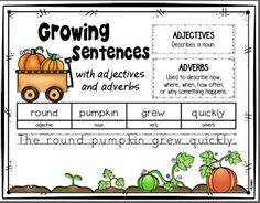 FREE Pumpkin themed growing sentences lessons will help your students develop their writing skills using adjectives and adverbs. Great addition to:  ◼ Life cycle of pumpkins unit ◼ From Seed to Pumpkin ◼ The Legend of Spookley the Square Pumpkin ◼ Too Many Pumpkins ◼ The Runaway Pumpkin