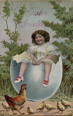 Vintage Easter Chicks & Girl in Egg Greetings Postcard Card Victorian c1910 #Easter