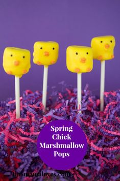 Spring Chick Marshmallow Pops | This Mama Loves | Easter | Treats | Cake Pops