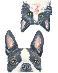 Boston Terrier Watercolor PRINT  11x14 PRINT por WaterInMyPaint, $32.00